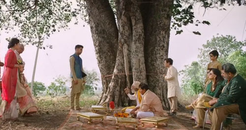 Kanan-Marrys-the-tree