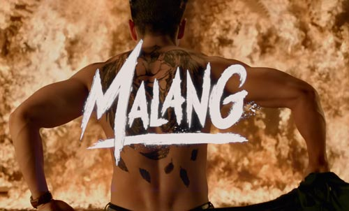 Malang Movie Excels At Box Office After Opening Weekend